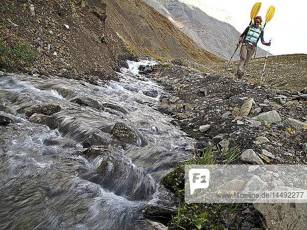 Female backpacker with a packraft along a creek and trail to the headwaters of Sanctuary River  Interior Alaska  Autumn