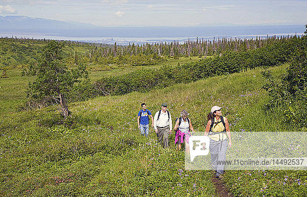 Group of men and women hikers along Williwaw lakes trail in Chugach State Park near Anchorage  Alaska during Summer