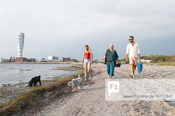 Three generation family walking with dogs on beach