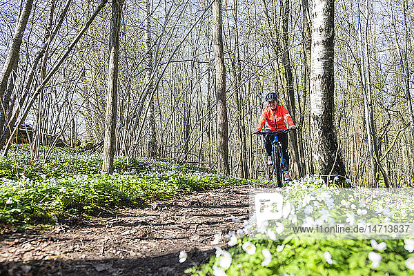 Woman cycling through spring forest
