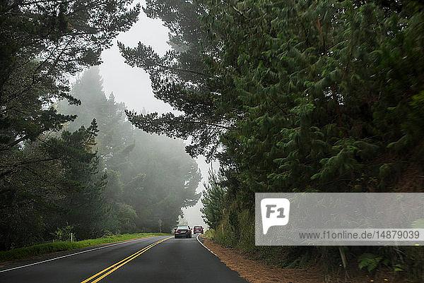 Autos auf der Straße  Haleakala  Maui  Hawaii