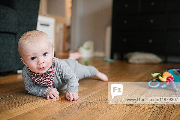 Kleiner Junge krabbelt auf Holzboden