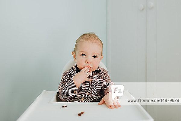 Kleiner Junge im Hochstuhl  Porträt