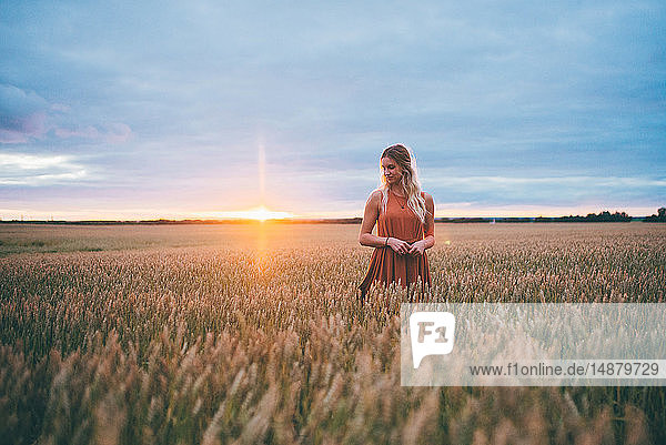 Woman enjoying wheat field  Edmonton  Canada