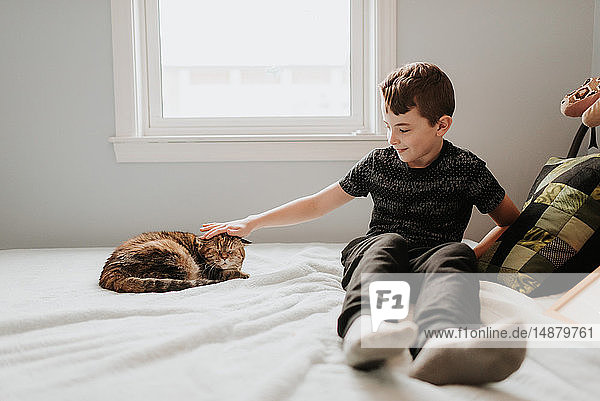 Boy stroking cat's head on bed