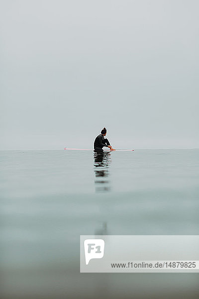 Junge Surferin sitzt auf einem Surfbrett in ruhiger  nebliger See  Ventura  Kalifornien  USA