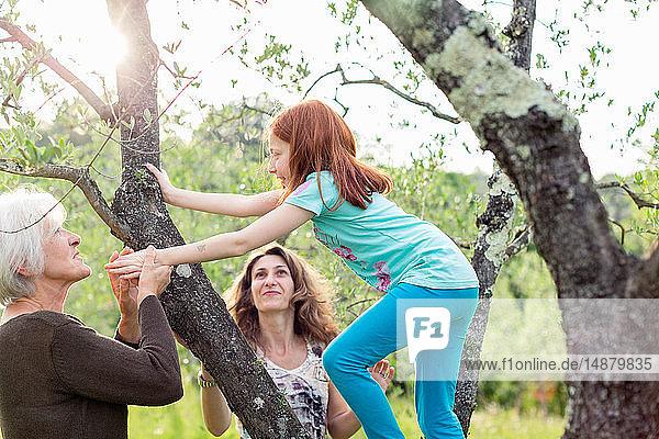 Mädchen klettert im Gartenbaum,  beobachtet von Mutter und Großmutter