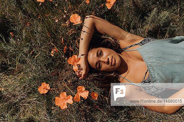 Junge Frau im Feld von Wildblumen liegend  Überkopfporträt  Jalama  Kalifornien  USA