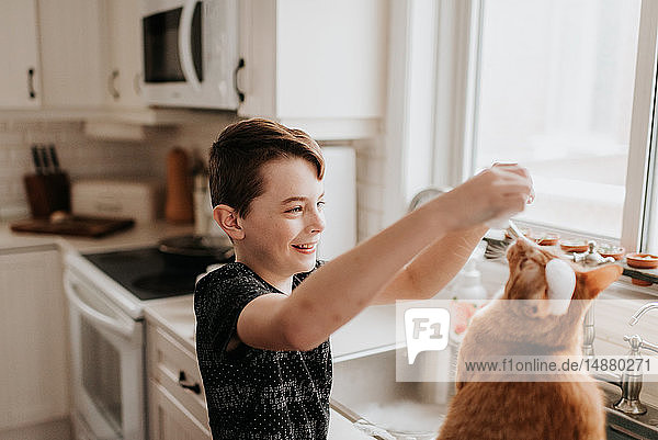 Boy playing with cat on kitchen worktop