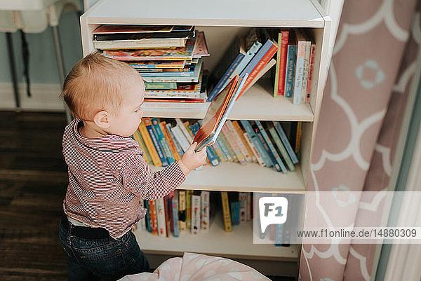 Kleiner Junge im Wohnzimmer nimmt Geschichtenbuch aus Bücherregalen