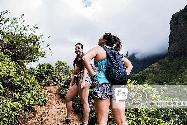 Wanderer  die im Regenwald wandern  Iao Valley  Maui  Hawaii