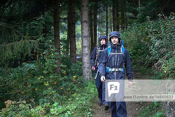 Junges Wanderpaar wandert mit Kapuzenanoraks durch den Wald  Manigod  Rhône-Alpes  Frankreich