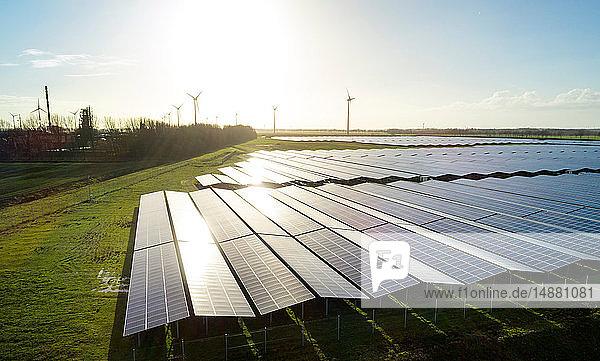 Feldlandschaft mit dem größten Solarpark der Niederlande  in der Nähe des Hafens von Delfzijl gelegen