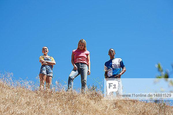 Drei junge erwachsene Freunde auf dem Gipfel eines Hügels im Park  Niedrigwinkelansicht  Los Angeles  Kalifornien  USA