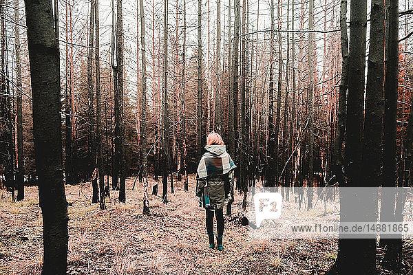 Frau steht im Winter im Wald  Ural  Swerdlowsk  Russland