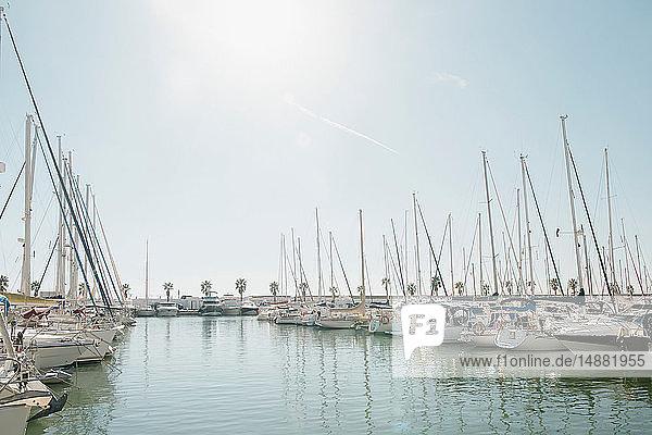 Sailboats moored at dock  Sitges  Catalonia  Spain