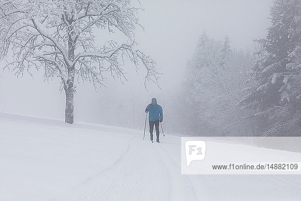 Mature man cross country skiing by misty forest  full length