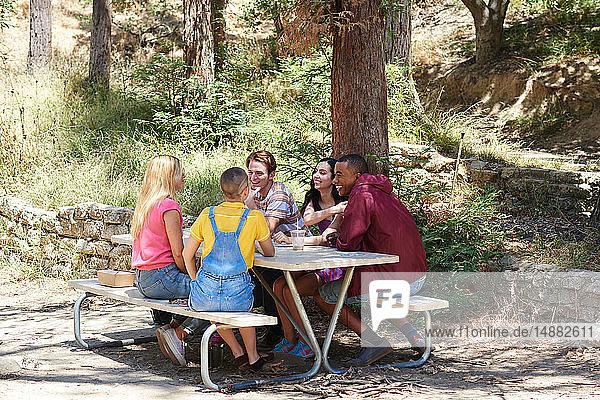 Fünf junge erwachsene Freunde unterhalten sich am Picknicktisch im Park  Los Angeles  Kalifornien  USA