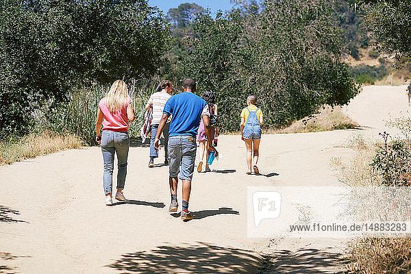 Fünf junge erwachsene Freunde gehen im Park spazieren  Rückansicht  Los Angeles  Kalifornien  USA