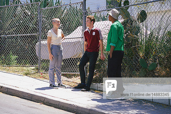 Young adult friends chatting on suburban sidewalk  Los Angeles  California  USA