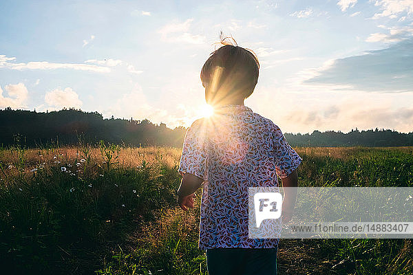 Boy playing in field at sunset