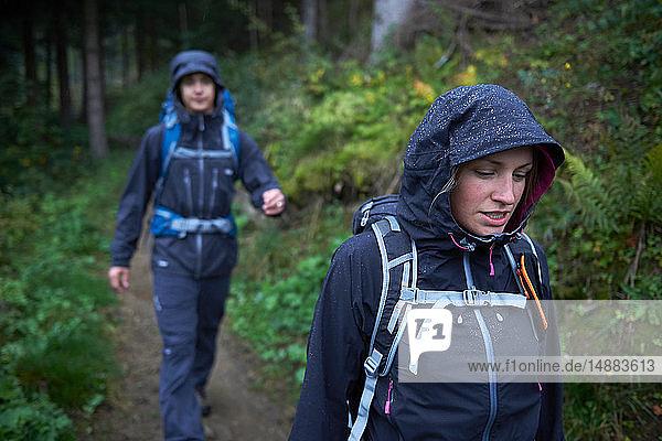 Junges Wanderpaar wandert bei Regen in Kapuzenanoraks durch den Wald  Manigod  Rhône-Alpes  Frankreich