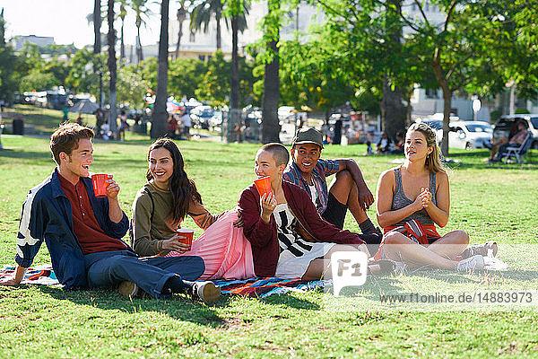 Fünf junge erwachsene Freunde sitzen im Park  Los Angeles  Kalifornien  USA