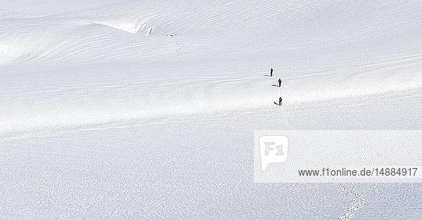 Greenland  Sermersooq  Kulusuk  Schweizerland Alps  three people walking in snow