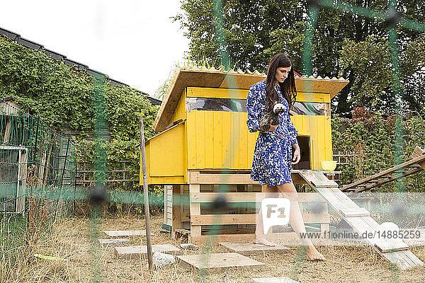 Frau hält polnisches Huhn  das im Hühnerstall im Garten läuft