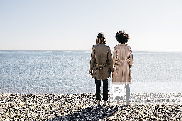 Back view of two friends standing on the beach looking at the sea