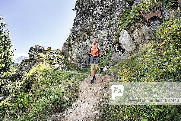 Schweiz  Wallis  glückliche Frau auf einer Wanderung in den Bergen von der Belalp zur Riederalp
