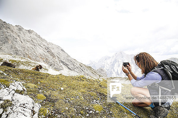 Austria  Tyrol  woman on a hiking trip in the mountains taking cell phone picture