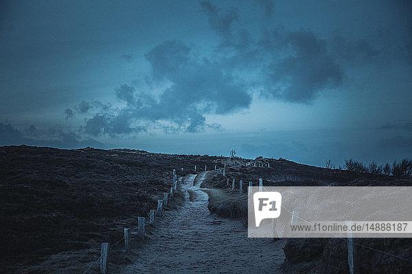 Deutschland  Sylt  Nationalpark Schleswig-Holsteinisches Wattenmeer  Morsum Kliff  Dünenlandschaft  Blaue Stunde