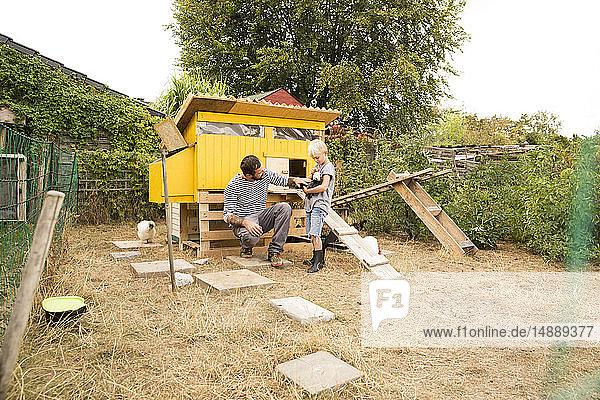 Vater und Sohn mit polnischen Hühnern im Hühnerstall im Garten