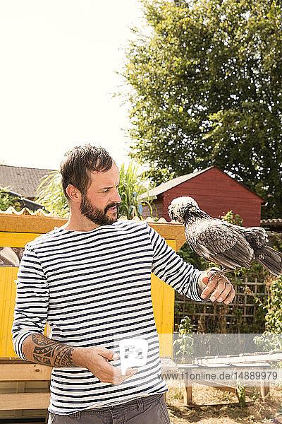 Mann mit polnischem Huhn im Hühnerstall im Garten