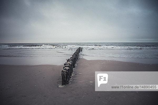 Deutschland  Sylt  Strand  Meer  Wellenbrecher  Winter