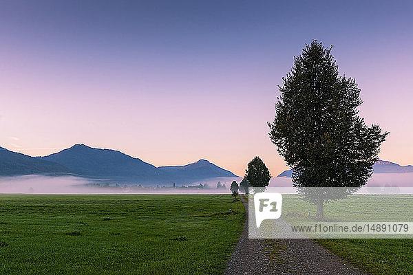 Deutschland  Bayern  Oberbayern  bei Benediktbeuern  Morgenstimmung