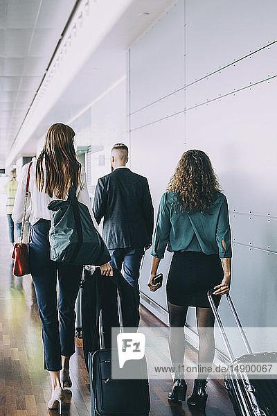 Rückansicht in voller Länge von multi-ethnischen Kollegen  die beim Gehen am Flughafen Gepäck ziehen
