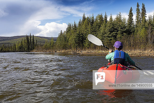 Woman packrafting down Beaver Creek  National Wild and Scenic Rivers System  White Mountains National Recreation Area  Interior Alaska; Alaska  United States of America