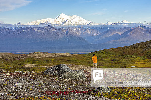 Man taking in the view  backpacking on the Kesugi Ridge Trail  Denali State Park  in the autumn with the Alaska Range in the background  South-central Alaska; Alaska  United States of America