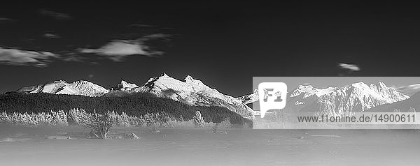 Black and white panorama of a winter morning on the Mendenhall wetlands  Southeast Alaska; Alaska  United States of America