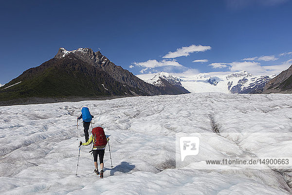 Couple backpacking across the Root Glacier with crampons on during summer towards Donoho Peak  Wrangell Mountains  Wrangell-St. Elias National Park  South-central Alaska; Kennicott  Alaska  United States of America