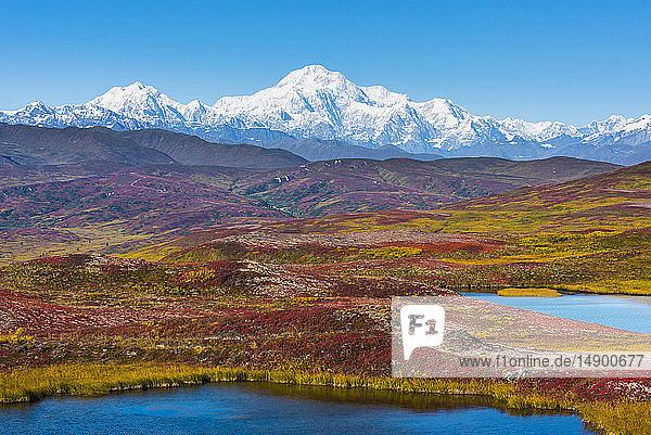 Denali National Park and Preserve as seen from Peters Hills with 20320' Mount Denali  formally know as Mount McKinley  and the Alaska Range; Trapper Creek  Alaska  United States of America