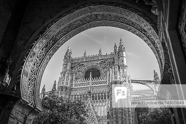 Seville Cathedral; Seville  Seville province  Spain