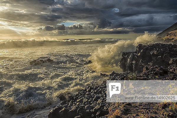 Waves pound the shoreline along the West coast of Oahu; Oahu  Hawaii  United States of America