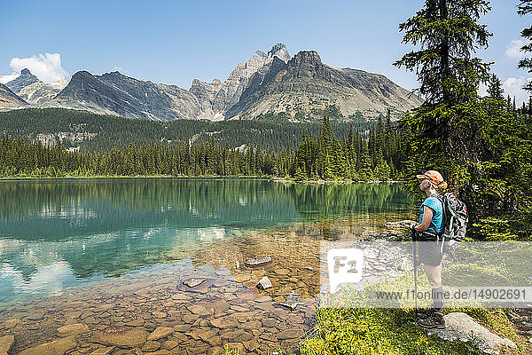 Female hiker standing along the shoreline of an alpine lake refelcting mountain range with blue sky; British Columbia  Canada