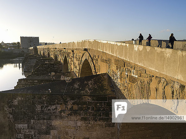 Roman bridge over the Guadalquivir River; Cordoba  Province of Cordoba  Spain