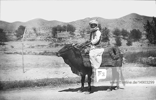 Magic lantern slide circa 1880.Victorian/Edwardian.Social History. Slide set: Life during the time of the British Raj ( British Empire ) empire Pakistan. A native farmer in Hannah Valley Pakistan riding on the back of an ox