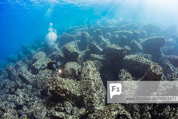 This diver is swimming over the enormous concrete 'jacks' that make up the breakwater for Kaumalapau Harbor; Lanai  Hawaii  United States of America
