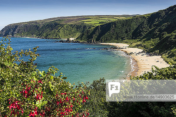 The remote beach along the coastline in Kinnagoe Bay; County Donegal  Ireland